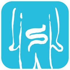 大腸.jpg
